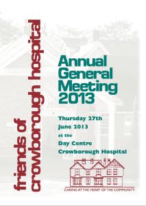 AGM Report 2013
